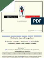 protocolo biomagnetismo