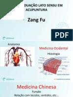 Aula Zang Fu (1).pdf