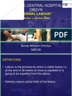 WLN-NORMAL LABOUR.ppt
