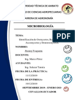 micropato