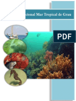 Expediente final Mar Tropical Grau