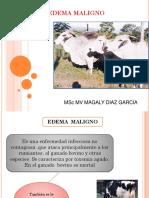 3). Edema Maligno (1)