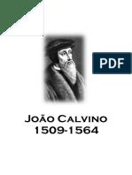 Joao Calvino era assim - Thea Van Hanselma