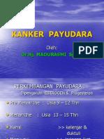 KANKER__PAYUDARA
