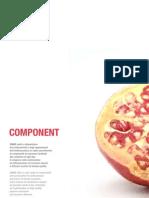 Ciare Catalogo Component