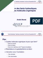 nonat-hydratation-des-liants-hydrauliques--action-des-molecules-organiques