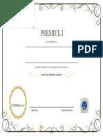 premiul I.docx