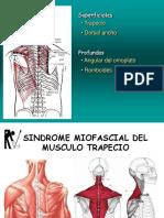 8. SMF Trapecio PRV
