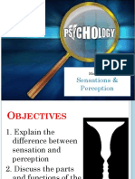 4 Sensation and Perception (2).pptx