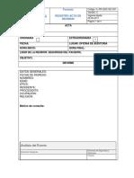 FORMATO DE PROTOCOLO DE LONDRES - copia.docx