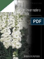 Cultivo del Alhelí en invernadero para flor cortada.pdf