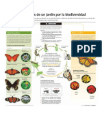 INTAinforma-Mariposas-BAJA-2.pdf