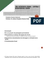 Apresentação_Seminário Pellegrino