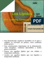 Clasificación Lipidos.ppt