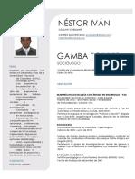 Hoja de Vida - Néstor Iván Gamba Torres. Julio .docx