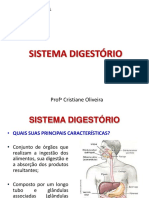 Aula 1 - Sistema Digestório