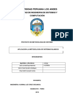 APLICACIÓN LA METODOLOGÍA DE SISTEMAS BLANDOS.docx