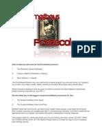 Pat Flynn- Prometheus Protocol