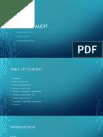 Market audit Ass.pptx