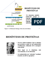 Biosintesis de Proteinas