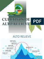 CULTIVO DE ALTO RELIEVE.pptx