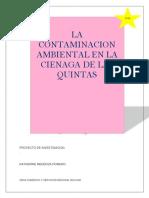 PROYECTO CONTAMINACION CIENAGA DE LA QUINTA-2.docx