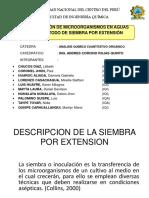 DESCRIPCION DE LA SIEMBRA POR EXTENSION.pptx