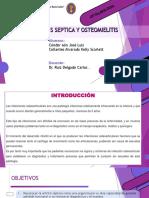 08-pptSEMINARIO RUIZ.pdf