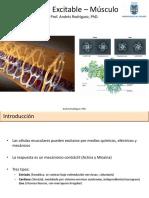 Unidad 02 Fisiologia Cardiovascula