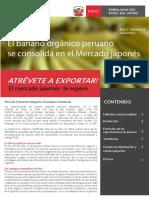 Exportación de banano orgánico peruano al Japón