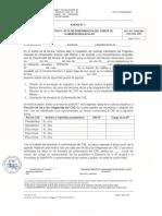 formatos-de-conformacion-y-actualizacion-cae