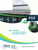 2014-06_livreblanc_biognv_0.pdf