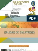 CALIDAD DE ENLATADOS.pdf