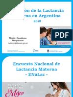TP N° 10d - Situacion de la Lactancia Marterna en la Argentina (2018)