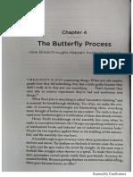 Butterfly Process