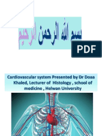 cardiovascular system (lecture 1)