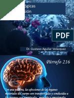 2.1. Bases fisiológicas de la supresión..pdf