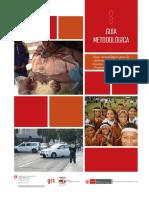 GUIA METODOLOGICA DE PROGRAMAS PRESUPUESTALES