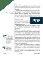 brucella_canis-es.pdf