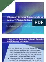 Régimen Laboral Especial de la Micro y Pequeña