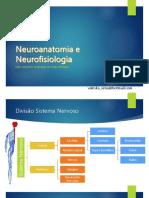 2-Neuroanatomia e Neurofisiologia