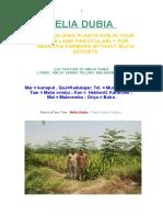 CULTIVATION OF MELIA DUBIA1.pdf