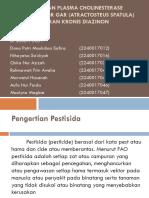 PENGHAMBATAN PLASMA CHOLINESTERASE PADA ALIGATOR GAR (ATRACTOSTEUS.pptx