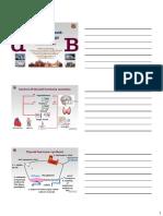 BMedSc Thyroid KB_2019.pdf