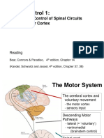 BSC Motor Systems I all slides on white 19-20.pdf