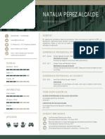como-hacer-un-curriculum-785-pdf