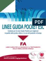 Pocket FA.pdf