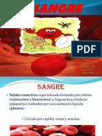 sangre y componentes