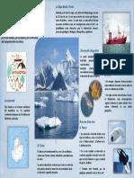 Antártida Grandez