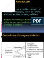 Le métabolisme des protéines.ppt